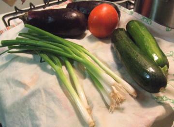 scallions, eggplant, tomato, zucchini